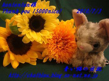 ChatBleu_15000nice.jpg